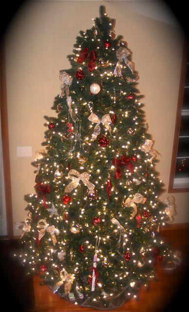 Tree downstairs